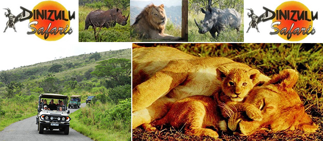 DINIZULU SAFARIS AND COTTAGE
